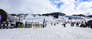 Accountant Listing Partner Perisher Accommodation